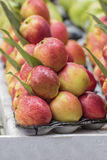 Fresh apples. Many fruit of the photoit is beautiful image Stock Photos