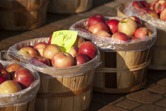 Fresh apples at an open air market. A few baskets of fresh picked apples in an open air market Stock Image