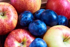 Fresh apples and plums royalty free stock images