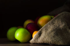 Fresh apples in the sack. Fresh colorful apples in the sack close-up on a dark background Stock Photography