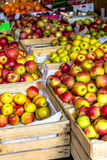 Fresh apples stand at the city market Royalty Free Stock Image