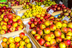 Fresh apples stand at the city market, Krakow, Poland Royalty Free Stock Image