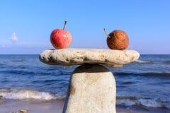 Fresh apples on stones Royalty Free Stock Photos