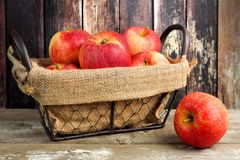 Fresh apples in vintage wire basket against rustic wood Stock Photo