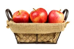 Fresh apples in a vintage wire basket isolated on white Royalty Free Stock Photo
