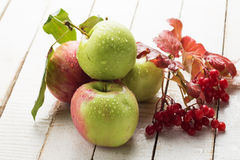 Fresh apples on white wooden background. Selective focus. Royalty Free Stock Image
