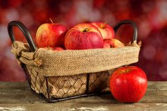 Fresh apples in a wire basket with defocused autumn background Royalty Free Stock Images