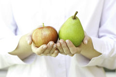 Fresh apples in woman's hands. The young woman is holding fruits in hands Stock Photos