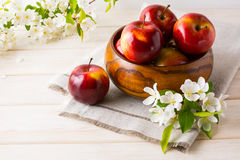 Fresh apples in the wooden bowl and apple blossom Stock Images