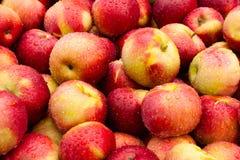 Fresh Applew With Dew Stock Image