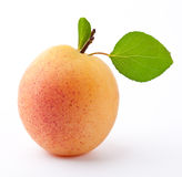 Fresh apricot. On a white background with leaves Stock Photos