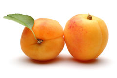 Fresh apricot fruits Stock Photography