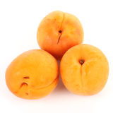 Fresh Apricot Stock Photography