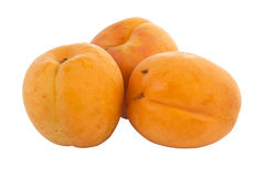 Fresh Apricot Royalty Free Stock Photo