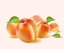 Fresh apricot juice Banner Royalty Free Stock Images