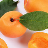 Fresh apricot with a leaf Royalty Free Stock Image