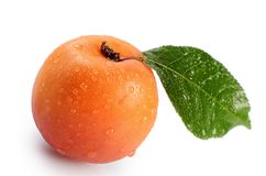 Fresh apricot with a leaf Stock Image