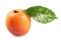 Fresh apricot with a leaf Royalty Free Stock Images