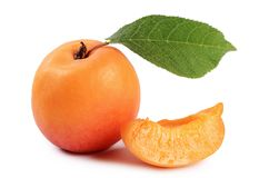 The fresh apricot with a leaf Royalty Free Stock Photo