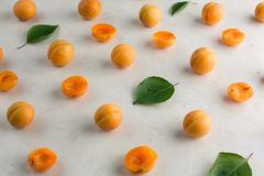 Fresh apricot pattern Royalty Free Stock Photography