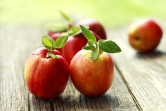 Fresh apricot on a wooden board Royalty Free Stock Photo