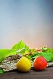 Fresh apricots Royalty Free Stock Image