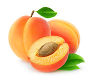 Free Fresh Apricots Royalty Free Stock Images - 58304379