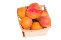 Fresh apricots in basket isolated on white Royalty Free Stock Image