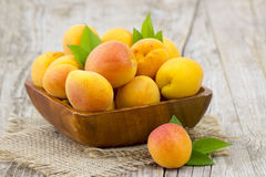 Fresh apricots in a bowl Royalty Free Stock Photography
