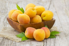 Fresh apricots in a bowl Stock Images