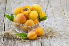 Fresh apricots in a bowl Stock Image
