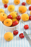 Fresh Apricots and Cherries Royalty Free Stock Images