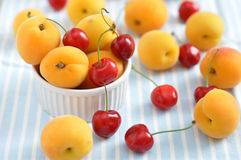 Fresh Apricots and Cherries Royalty Free Stock Photo