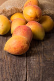 Fresh apricots with leaf Stock Photography