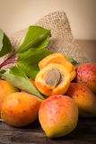 Fresh apricots with leaf Royalty Free Stock Photography