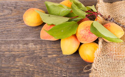 Fresh apricots with leaf Royalty Free Stock Images