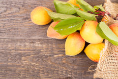 Fresh apricots with leaf Stock Photos