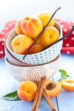 Fresh apricots in little cups Royalty Free Stock Images