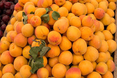 Fresh apricots in a market. Royalty Free Stock Images