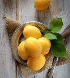 Fresh apricots on the plate on a wooden background Stock Images