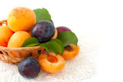 Fresh apricots and plums in a basket Royalty Free Stock Images