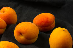 Fresh apricots in red plate Stock Images