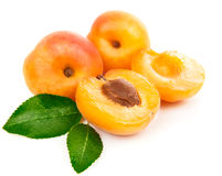 Fresh apricots in section with green leaves Stock Images