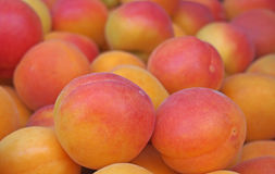 Fresh apricots at street market. Spain Royalty Free Stock Photography