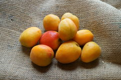 Fresh apricots. On the table Stock Photography