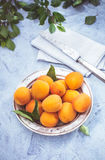 Fresh apricots top view Royalty Free Stock Image