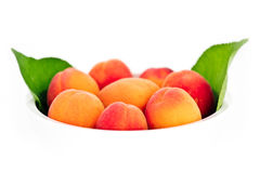 Fresh apricots in the white bowl isolated Stock Image