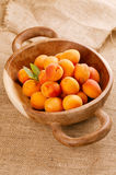 Fresh apricots on wooden bowl Royalty Free Stock Photos