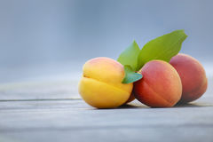 Fresh apricots on wooden table.  Stock Photo