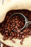 Fresh aromatic coffee beans Stock Image
